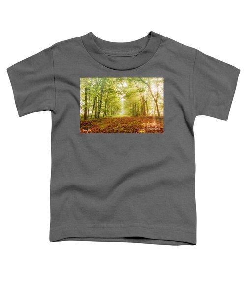 Neither Summer Nor Winter But Autumn Light Toddler T-Shirt