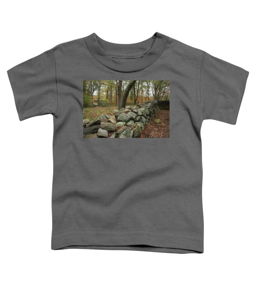 New England Stone Wall 1 Toddler T-Shirt