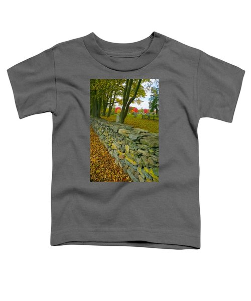 New England Stone Wall 2 Toddler T-Shirt
