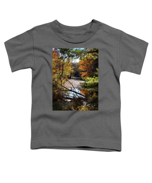 October Window Toddler T-Shirt