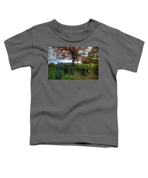 Old Hill Burying Ground In Autumn Toddler T-Shirt