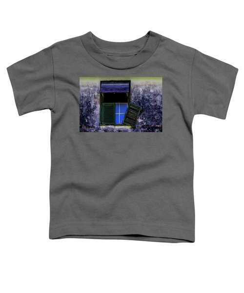 Old Window 2 Toddler T-Shirt