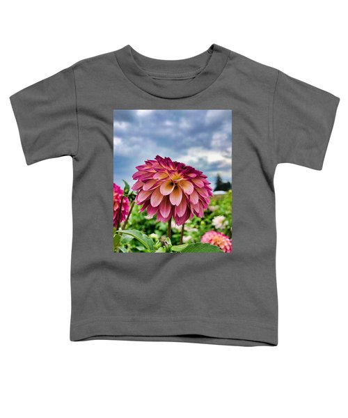 Ominous Sky Toddler T-Shirt