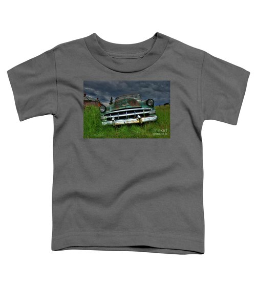 Out To Pasture Toddler T-Shirt