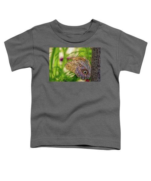 Owl Butterfly Toddler T-Shirt