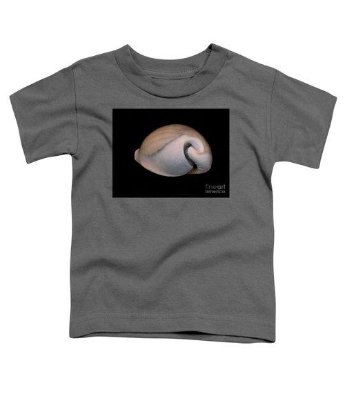Painted Shell No. 10 Toddler T-Shirt