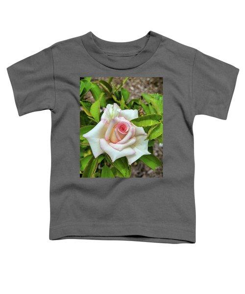Pale Rose Toddler T-Shirt