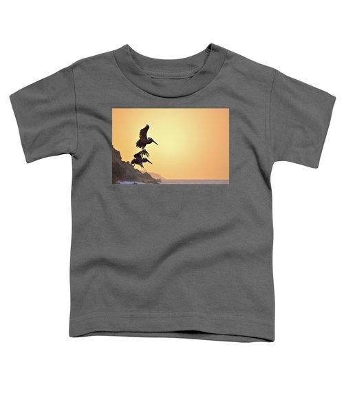 Pelican Down Toddler T-Shirt