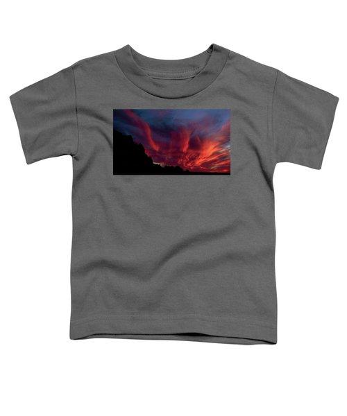 Phoenix Risen2 Toddler T-Shirt