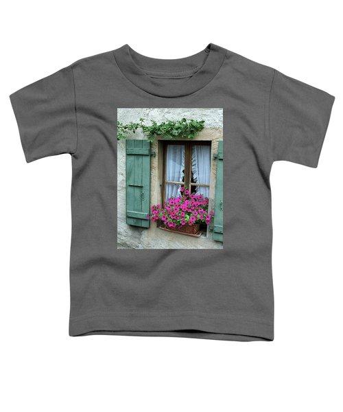 Pink Window Box Toddler T-Shirt