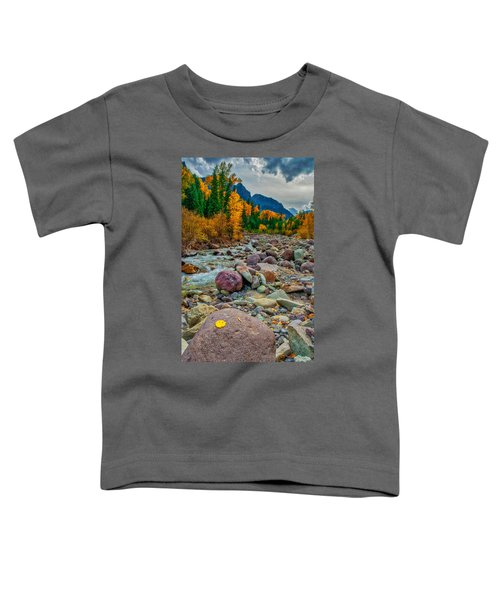 Point Of Color Toddler T-Shirt