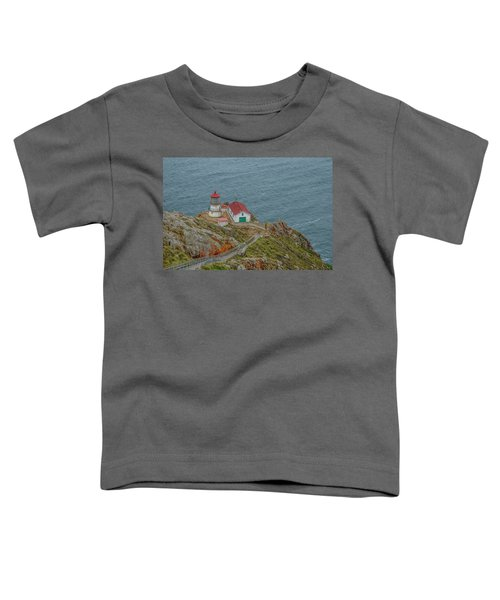 Point Reyes Lighthouse Toddler T-Shirt