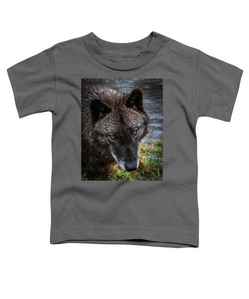 Portrait Niko Toddler T-Shirt