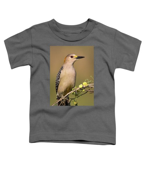 Portrait Of A Golden-fronted Woodpecker Toddler T-Shirt