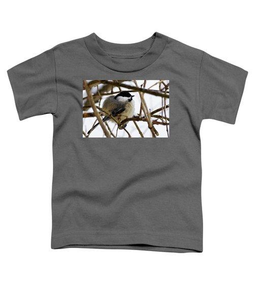 Puffed Up Toddler T-Shirt