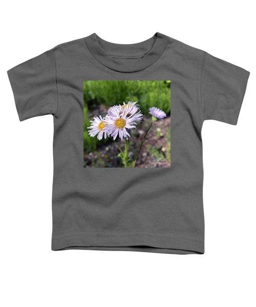 Purple Fleabane 5 Toddler T-Shirt