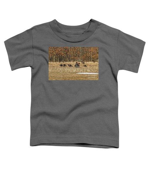 Rafter Of Wild Turkeys Toddler T-Shirt