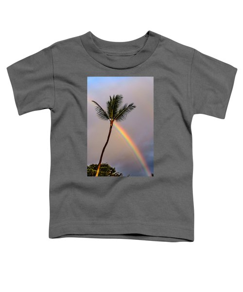 Rainbow Just Before Sunset Toddler T-Shirt