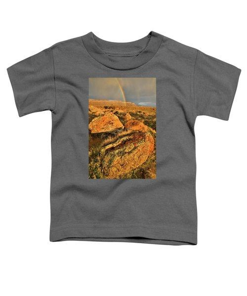 Rainbow Over The Book Cliffs Toddler T-Shirt