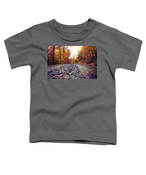 Rainy Fall Roads Toddler T-Shirt