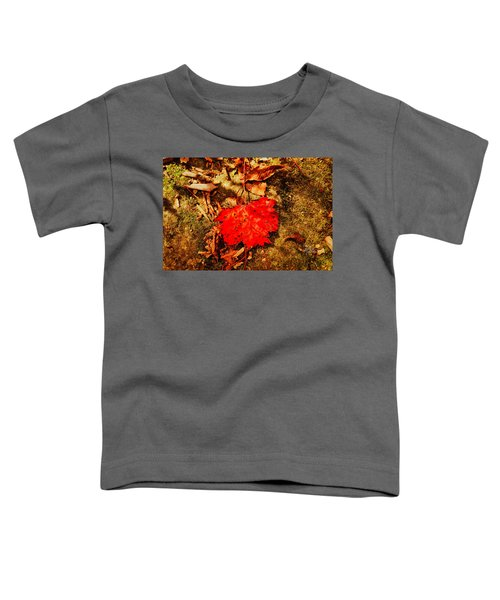 Red Leaf On Mossy Rock Toddler T-Shirt