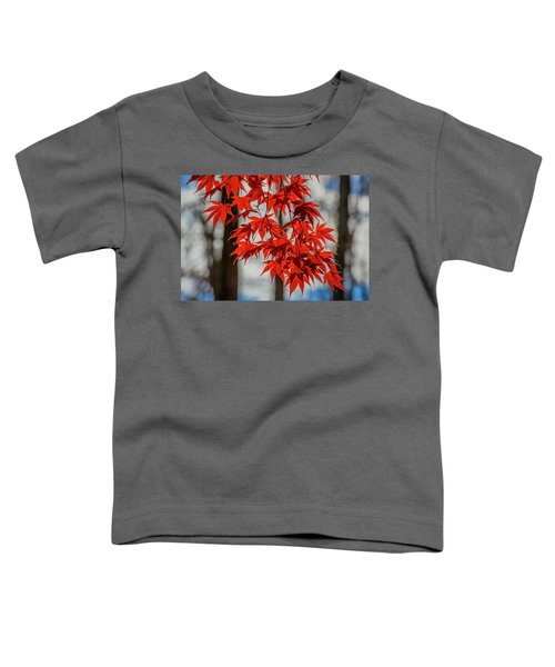 Red Leaves Toddler T-Shirt