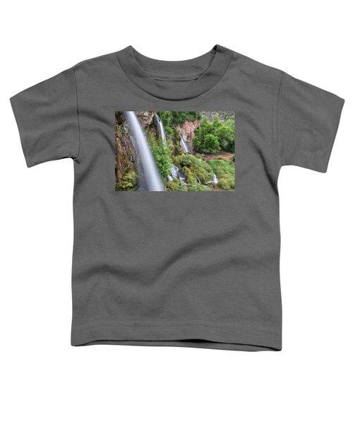 Rifle Falls Toddler T-Shirt