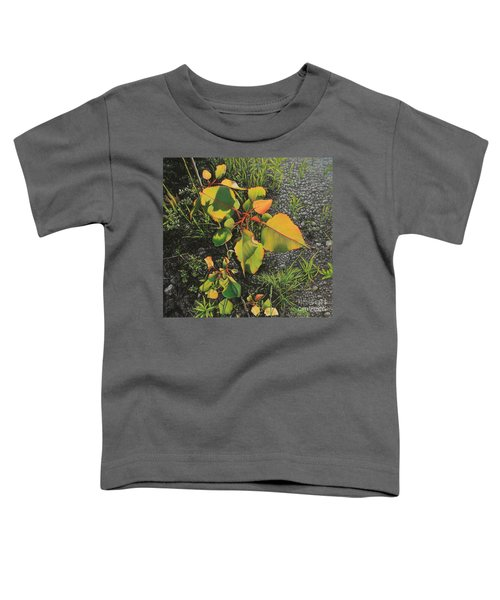 Roadside Attraction Toddler T-Shirt