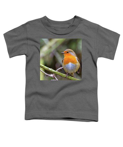 Robin. On Guard Toddler T-Shirt