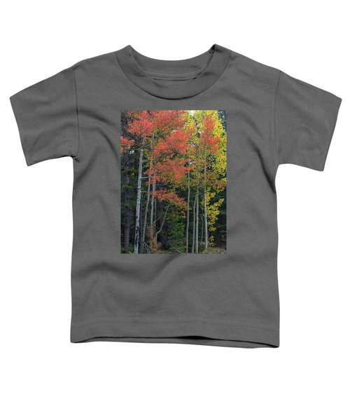 Toddler T-Shirt featuring the photograph Rocky Mountain Forest Reds by James BO Insogna
