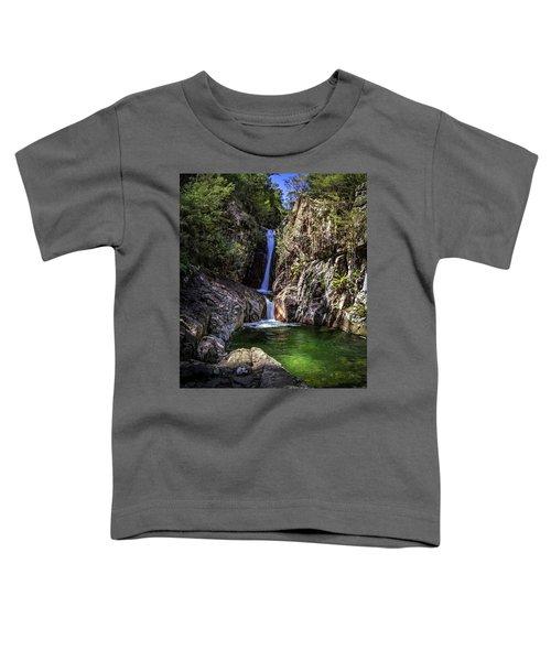 Rollalson Falls Toddler T-Shirt