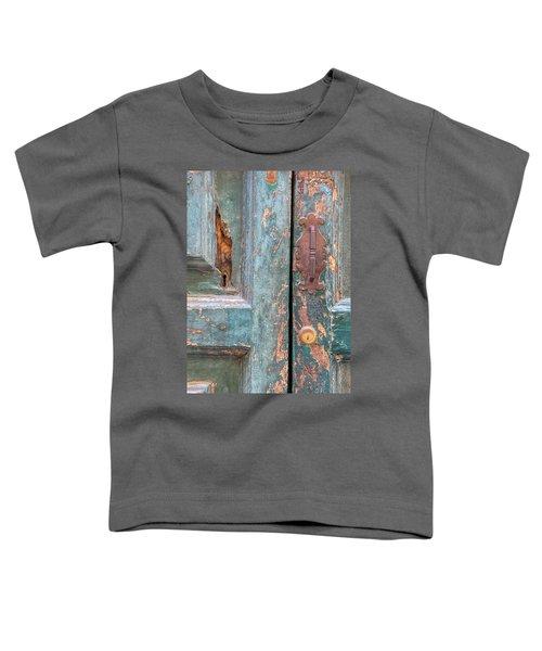 Rustic Green Door Of Cortona Toddler T-Shirt