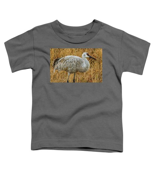 Sand Hill Crane Toddler T-Shirt
