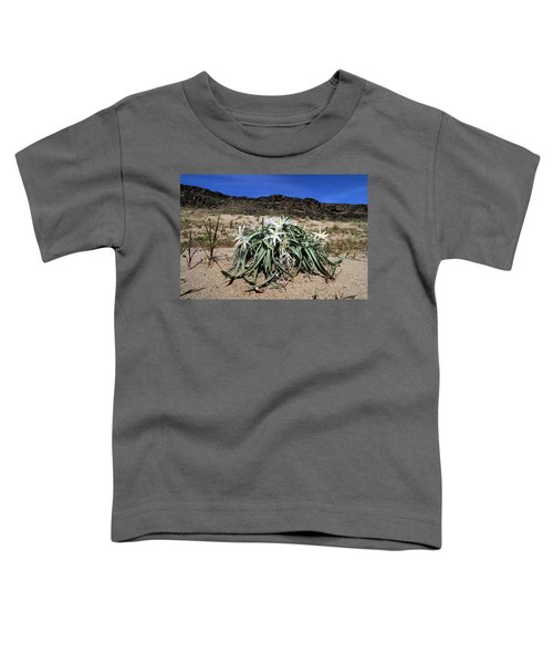 Star Lilys Its Springtime In The Rockys Toddler T-Shirt