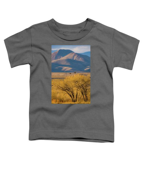 Sandhill Cranes Near The Bosque Toddler T-Shirt