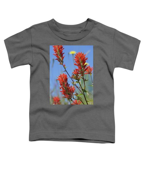 Scarlet Indian Paintbrush At Mount St. Helens National Volcanic  Toddler T-Shirt