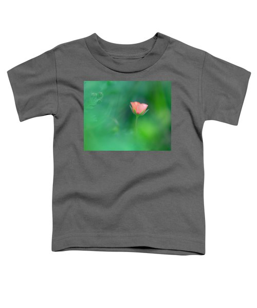 Scarlet Pimpernel Toddler T-Shirt