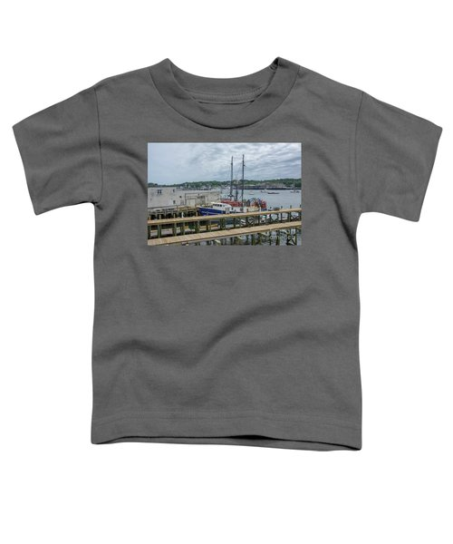 Scenic Harbor Toddler T-Shirt