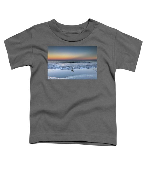 Seagull On The Beach Toddler T-Shirt