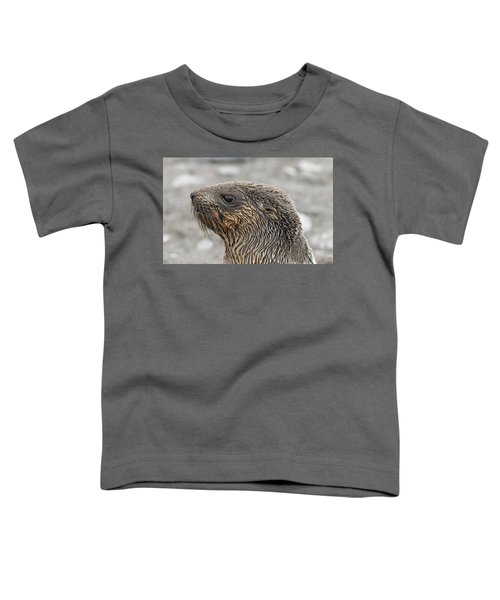 Seal Of Approval Toddler T-Shirt