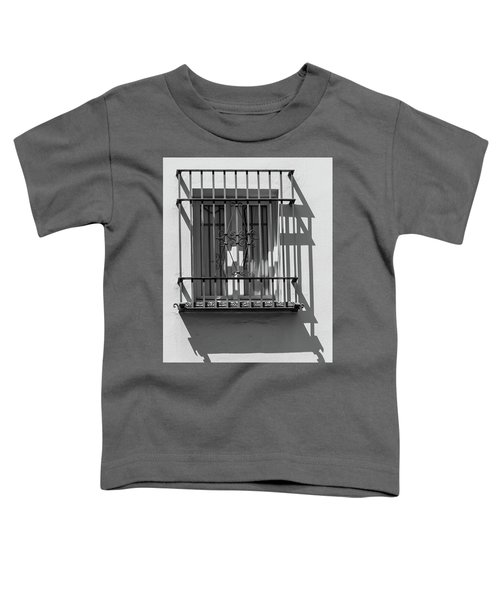 Shadow Window Of Spain Toddler T-Shirt