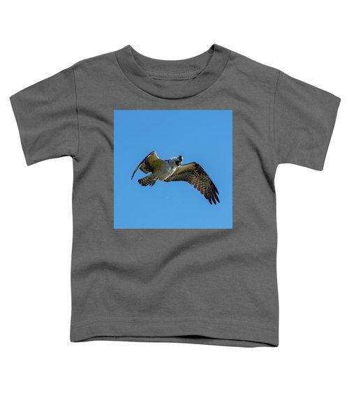 Shake It Off 2 Toddler T-Shirt