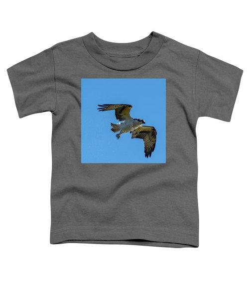 Shake It Off 5 Toddler T-Shirt
