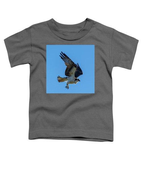 Shake It Off 7 Toddler T-Shirt