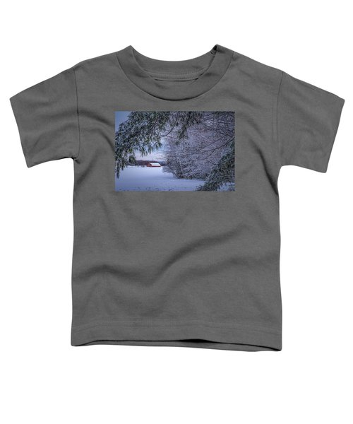 Shed At Sunset Toddler T-Shirt