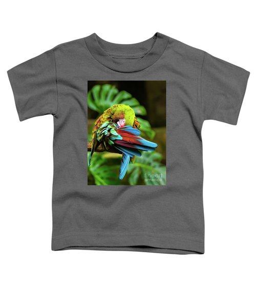 Shy Parrot Toddler T-Shirt