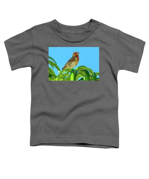 Singing House Finch Toddler T-Shirt