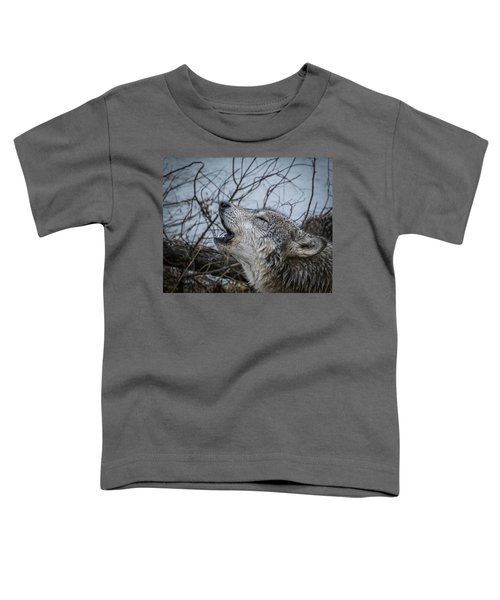 Singing The Song Of My People Toddler T-Shirt