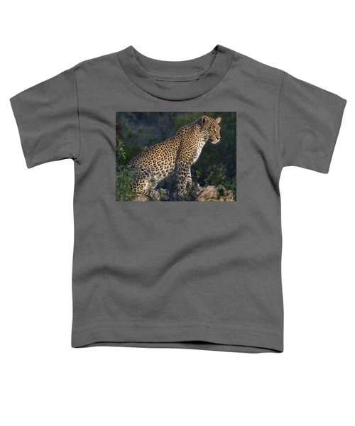 Sitting Leopard Toddler T-Shirt