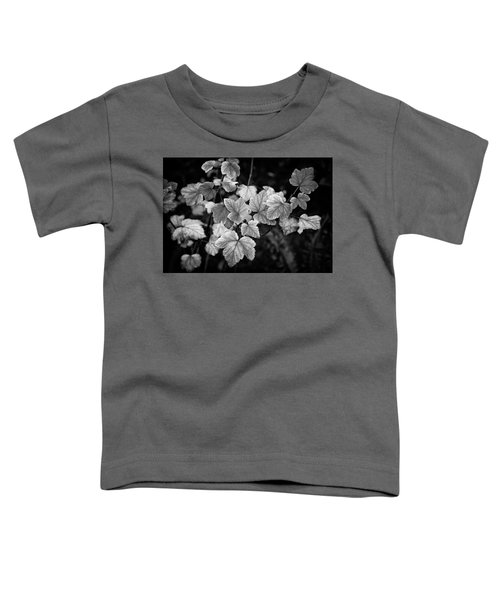 Slipping Into Fall Toddler T-Shirt